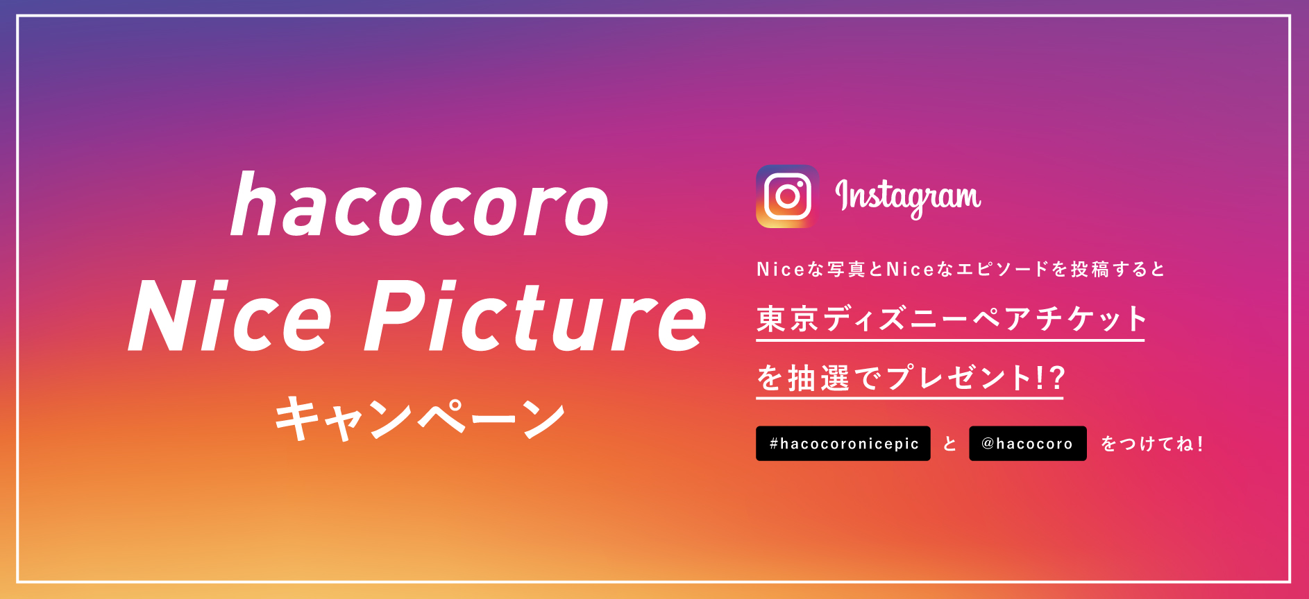 hacocoro Nice Picture キャンペーン
